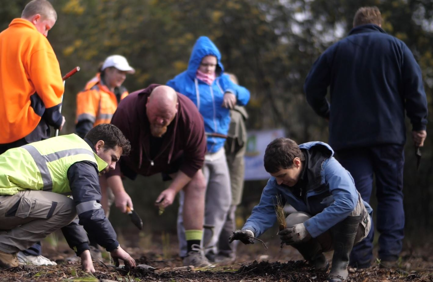World Environment Day Community Planting